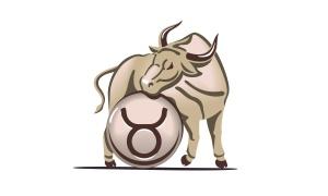 vincent beckers le taureau du zodiaque !