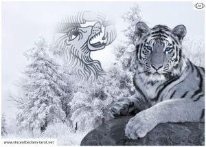 Lion de 11/, gentil toutou ou dangereuse bête ? Félin, sûrement !