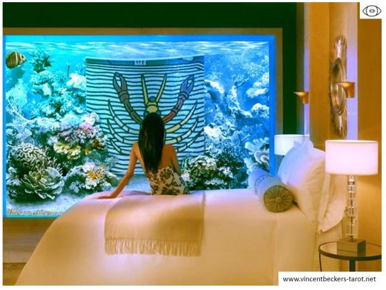vincent beckers cours tarot en ligne aquarium